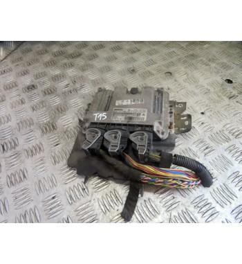 BASIC ECU CONTROL UNIT 9653202580 0281011089 PEUGEOT  206 LIFT 1.4 HDI